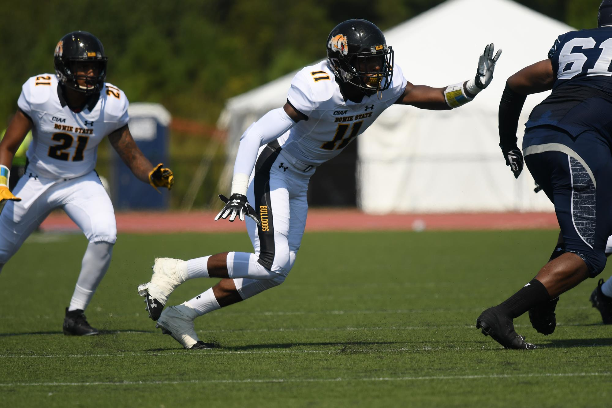 Image result for derrick tate bowie state