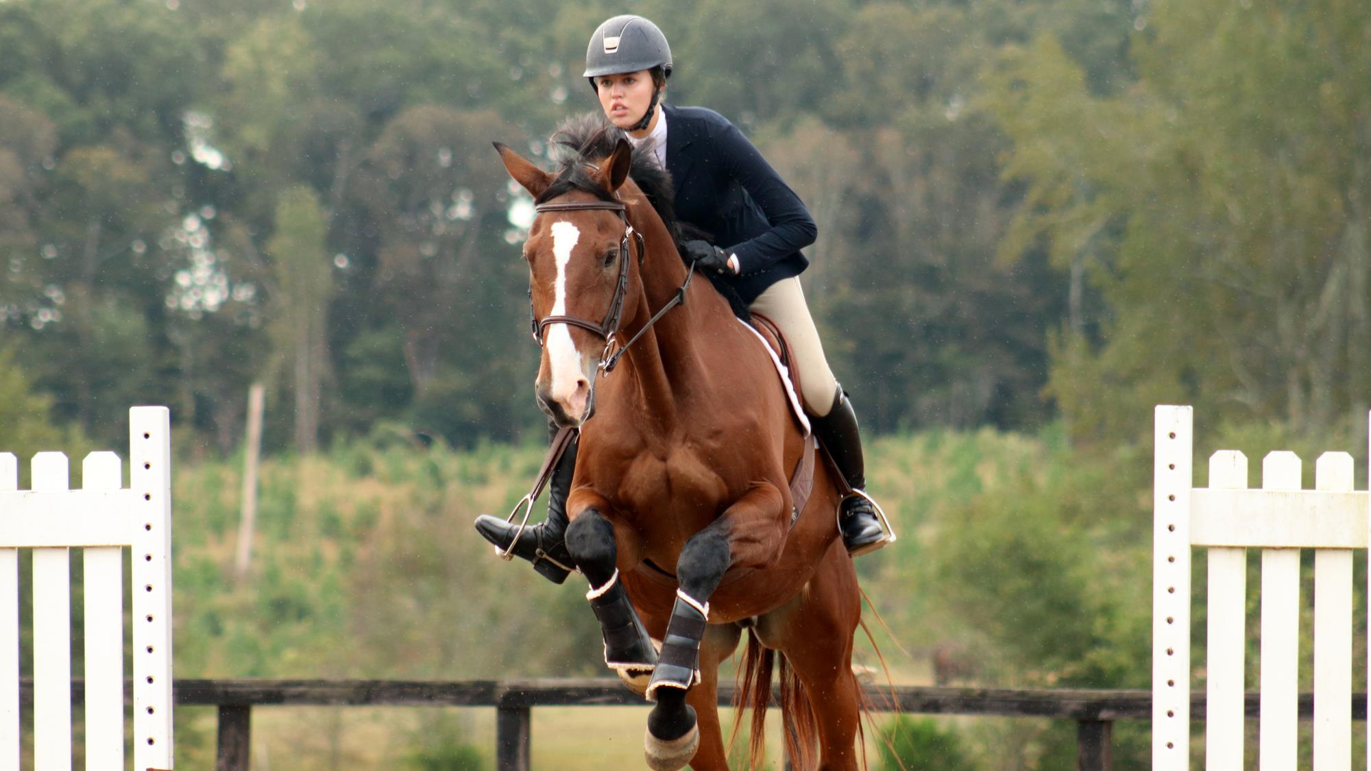 Equestrians Win Nine Blue Ribbons At Clemson Ihsa Show