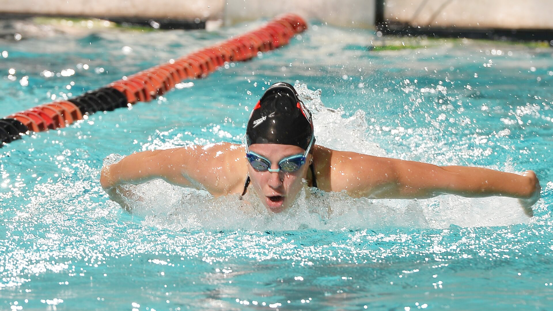 Women's Swimming & Diving Competes Against Queens
