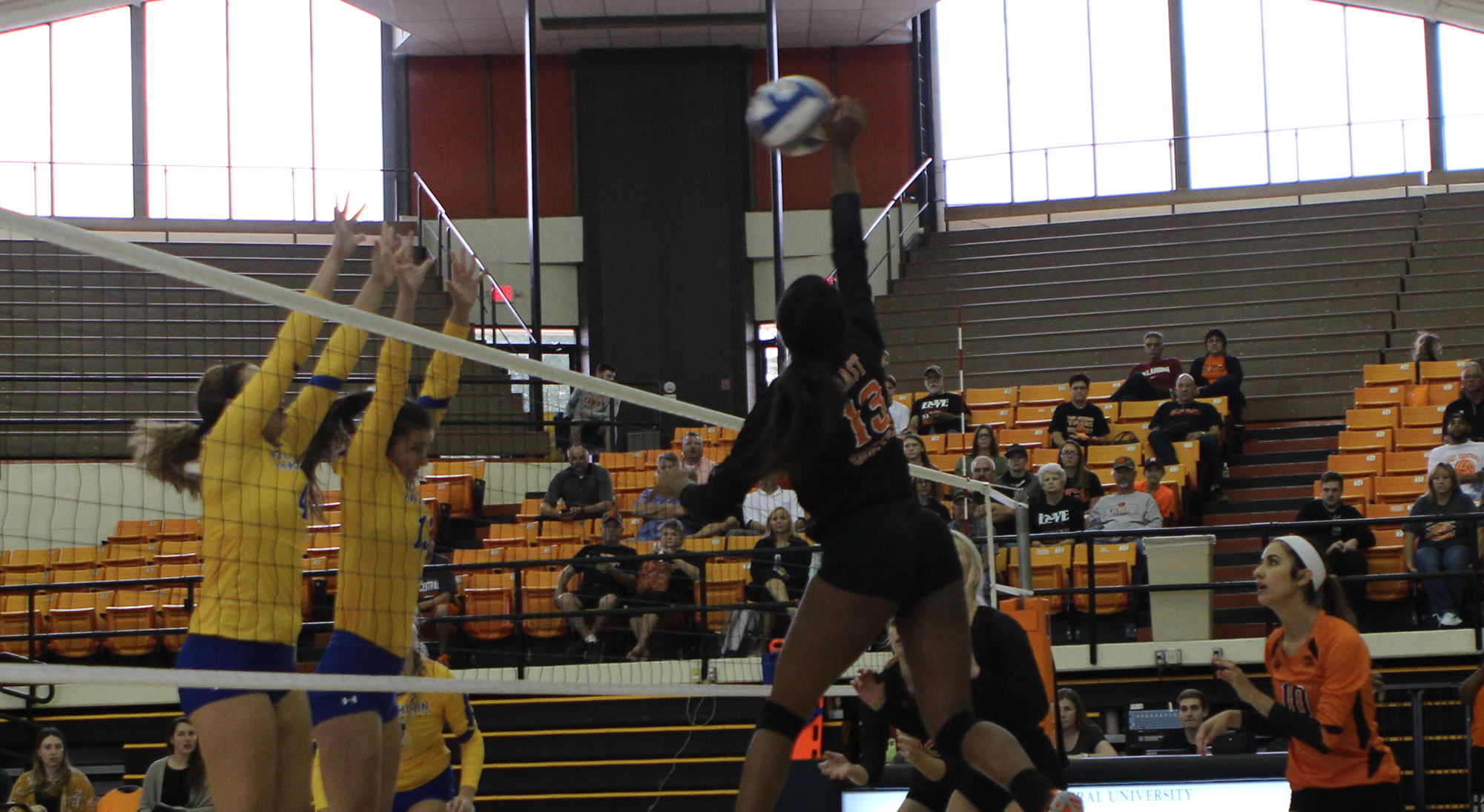 Alex Campbell - Volleyball - East Central University Athletics