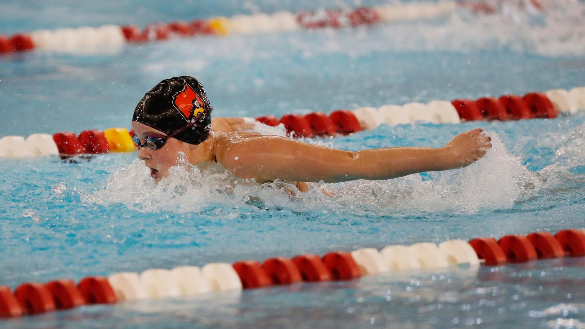 Grace oglesby swimming diving university of - University of louisville swimming pool ...