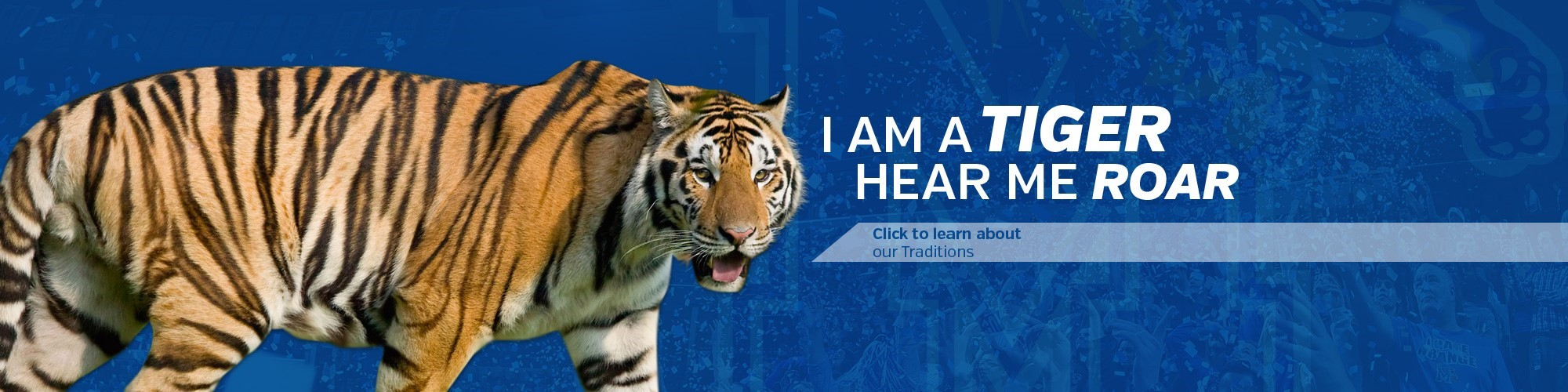 university of memphis athletics - university of memphis