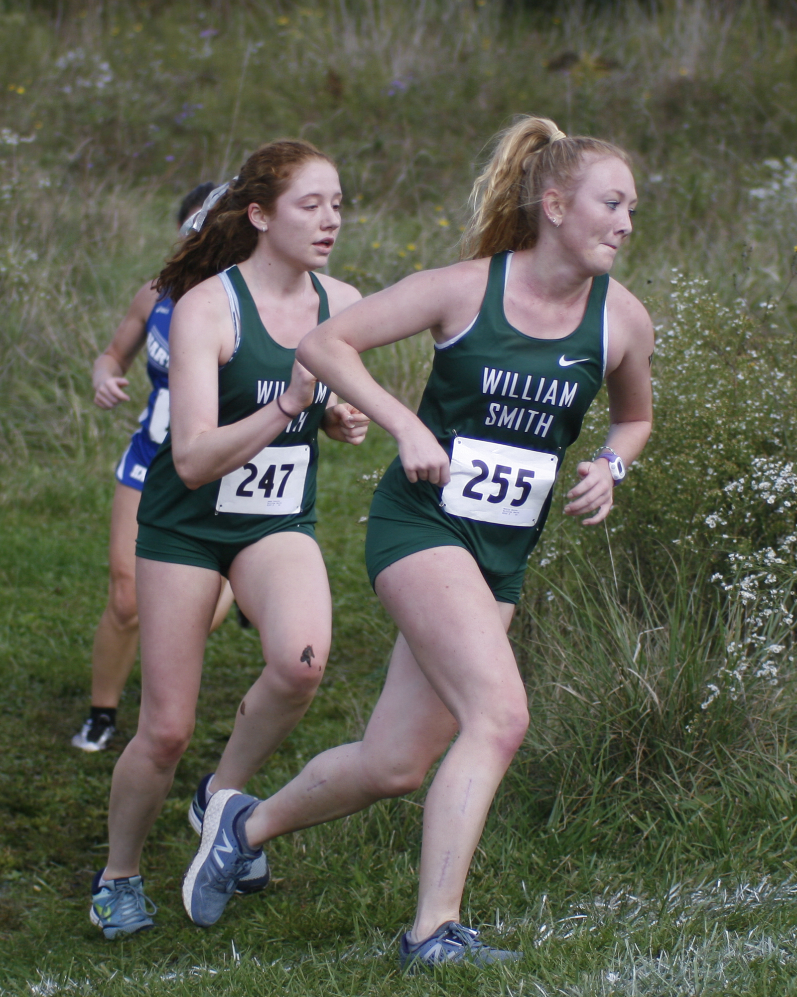 molly quinn 2017 hobart and william smith colleges