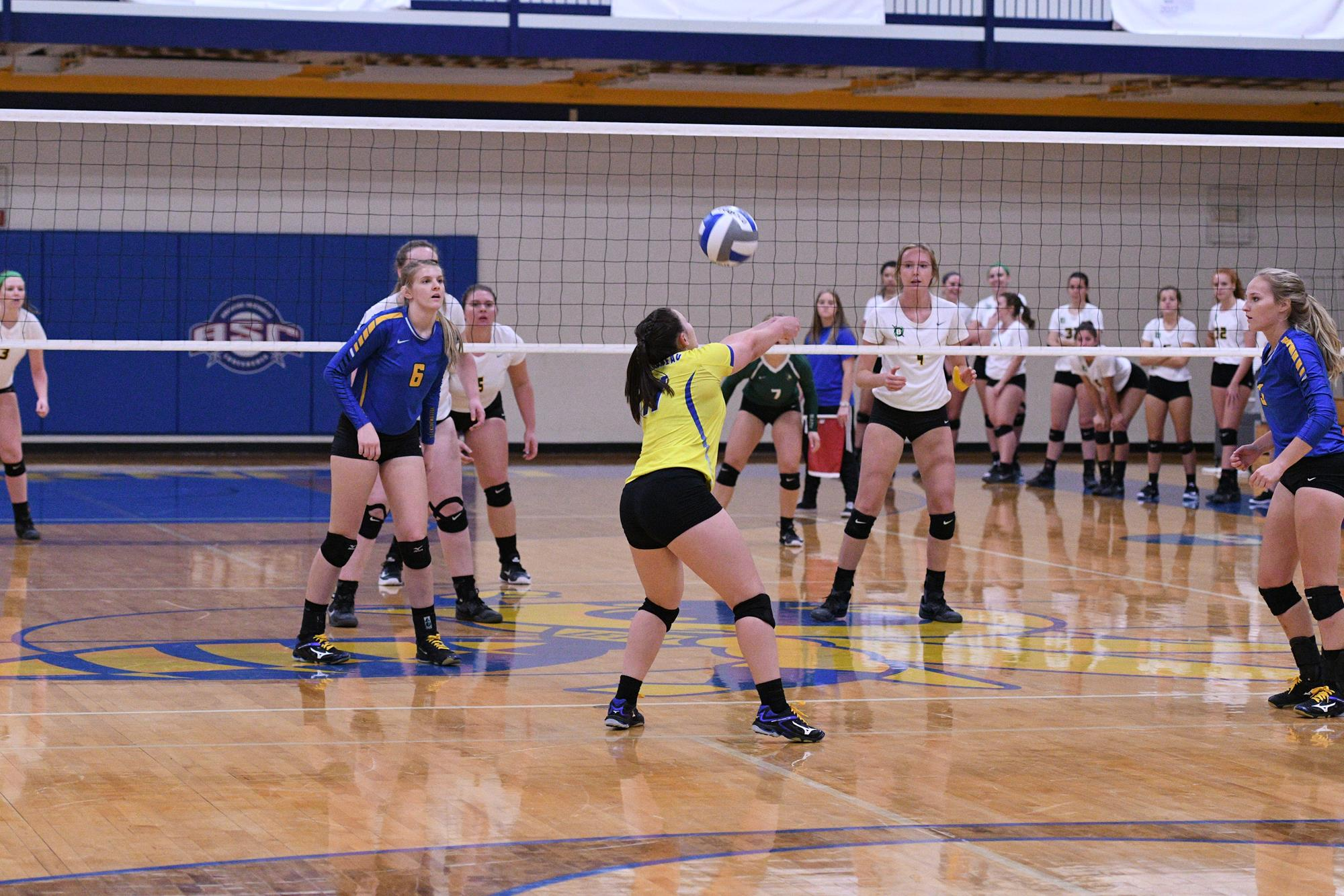 Volleyball: a selection of sites