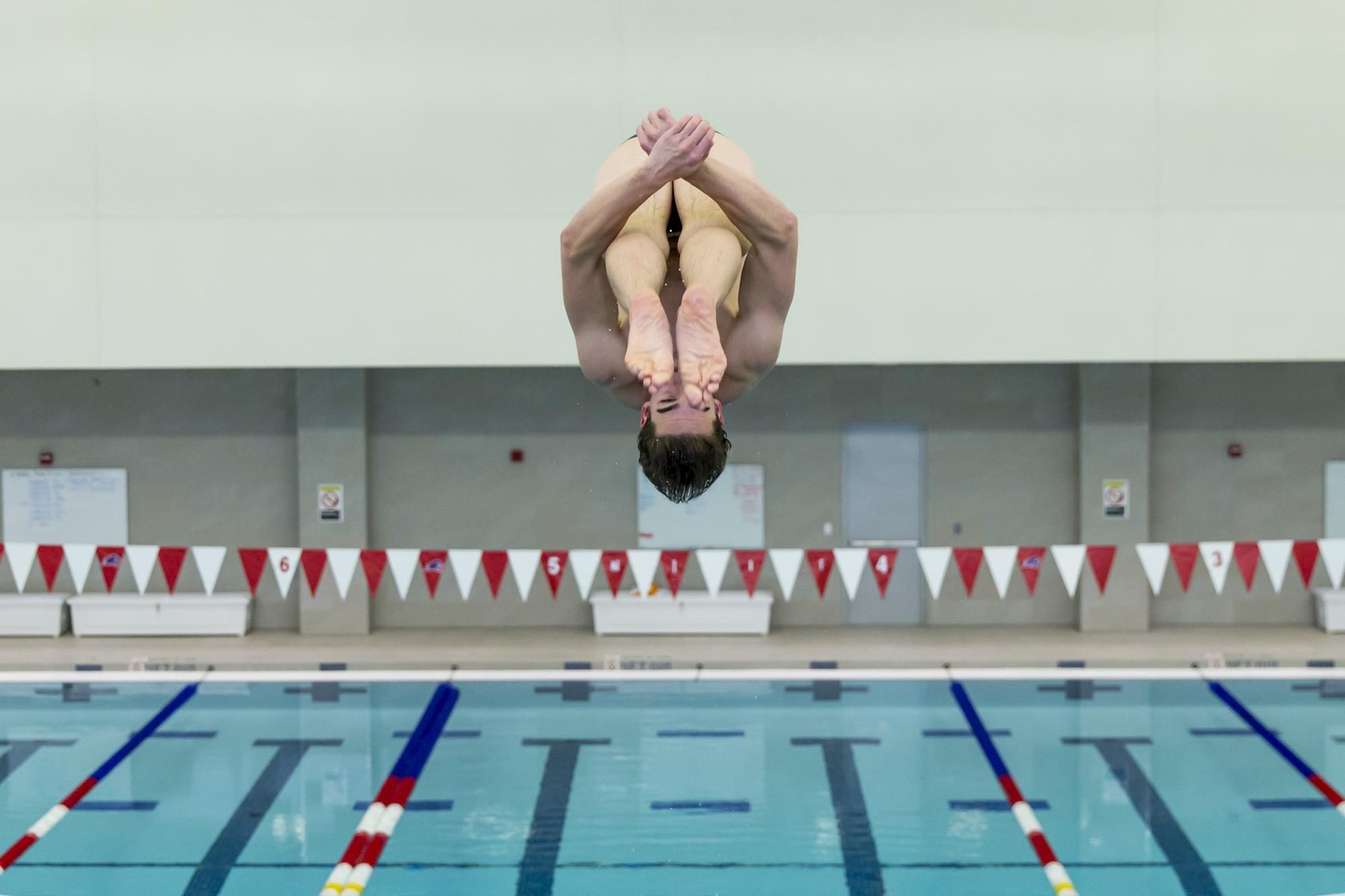 avery bechtel men 39 s swimming diving new jersey institute of technology athletics