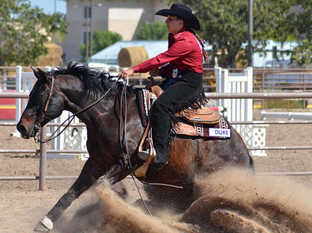 New Mexico State Athletics Nm State Equestrian Set For