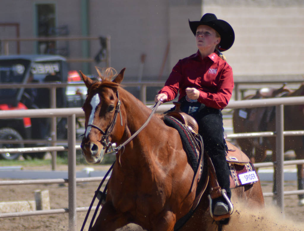New Mexico State Athletics Three Nm State Equestrian
