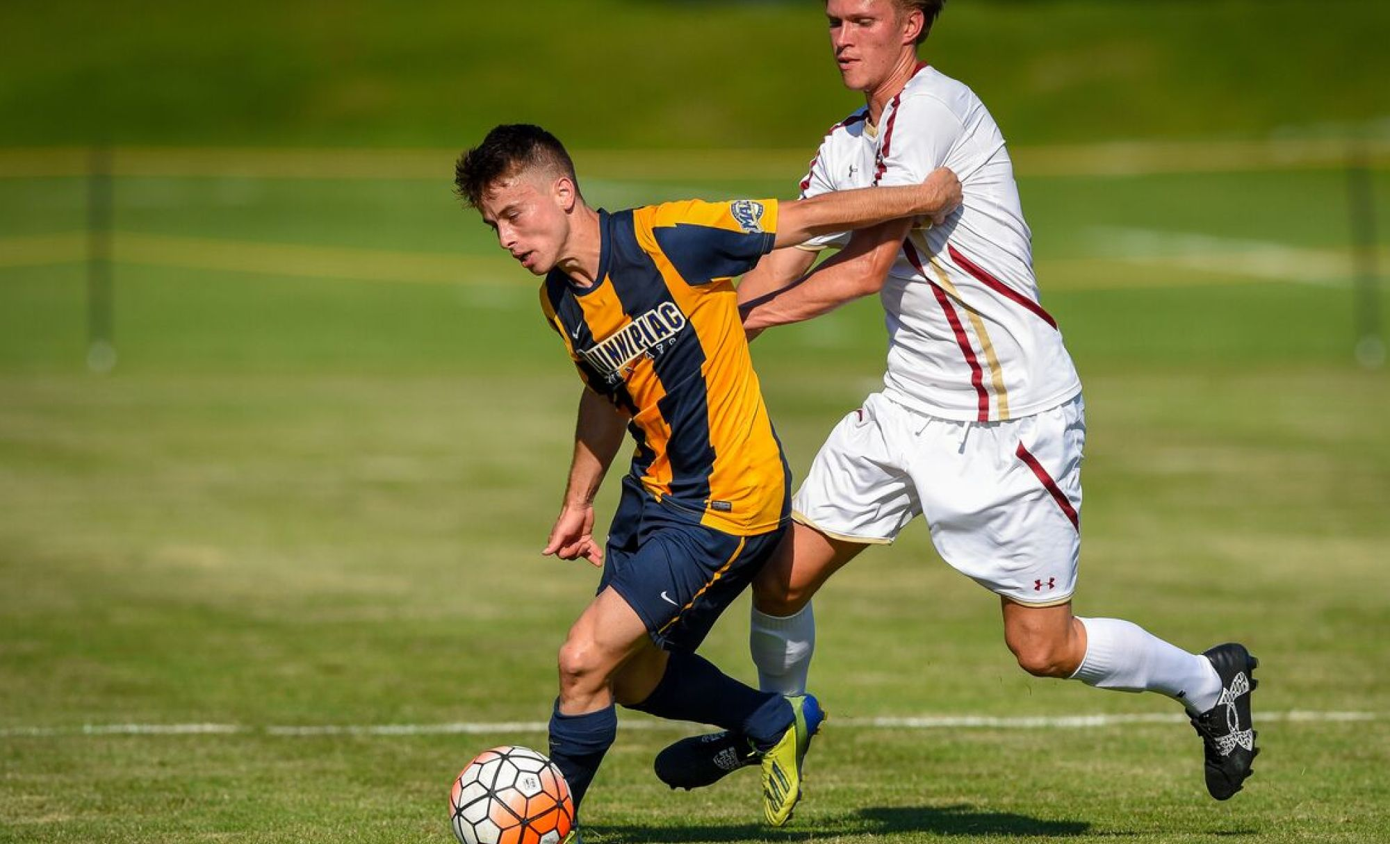 QU Men's Soccer Hosts Monmouth on Saturday Looking to ...