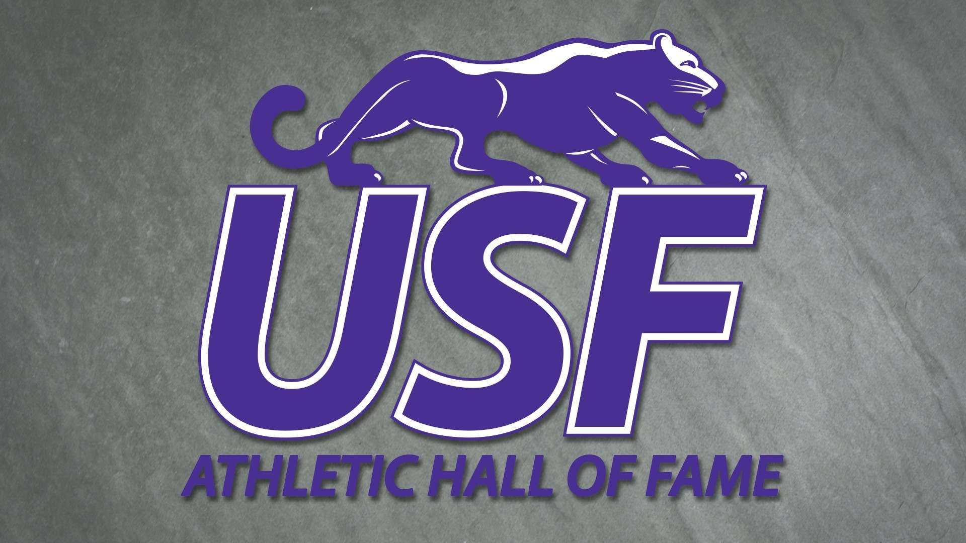 USF Athletics Hall of Fame graphic