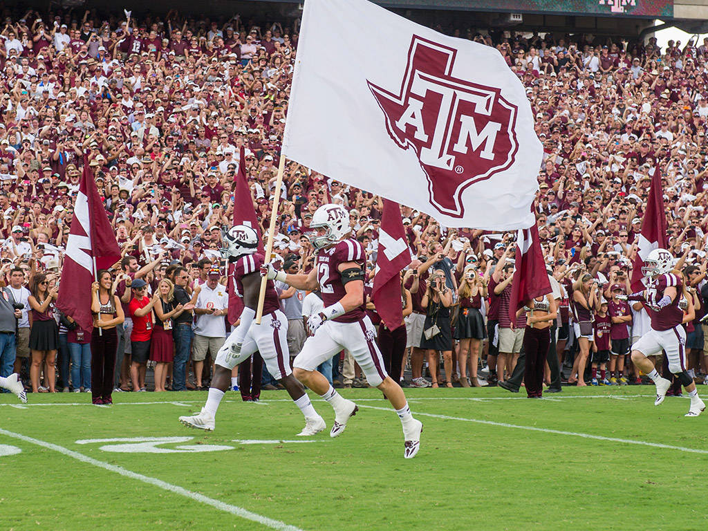 Image result for texas a&m university football
