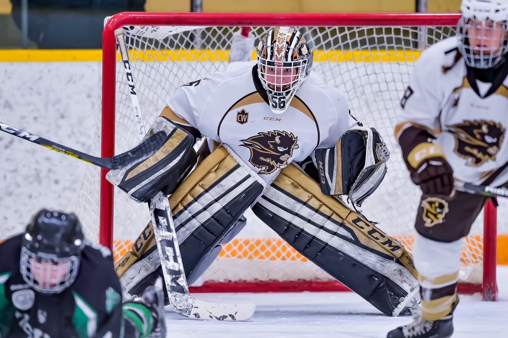 5215875e55b 1 Bison women s hockey team host No. 2 Alberta in Canada West semifinal  best-of-three playoff series on February 23-25 weekend held at Wayne  Fleming Arena