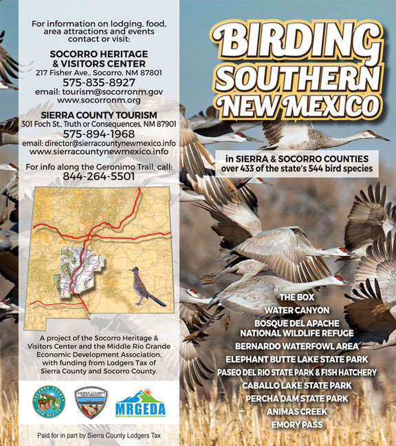 birding in Sierra County and Socorro County New Mexico