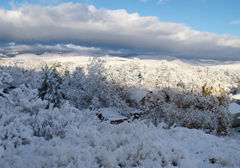 Christmas in the Foothills
