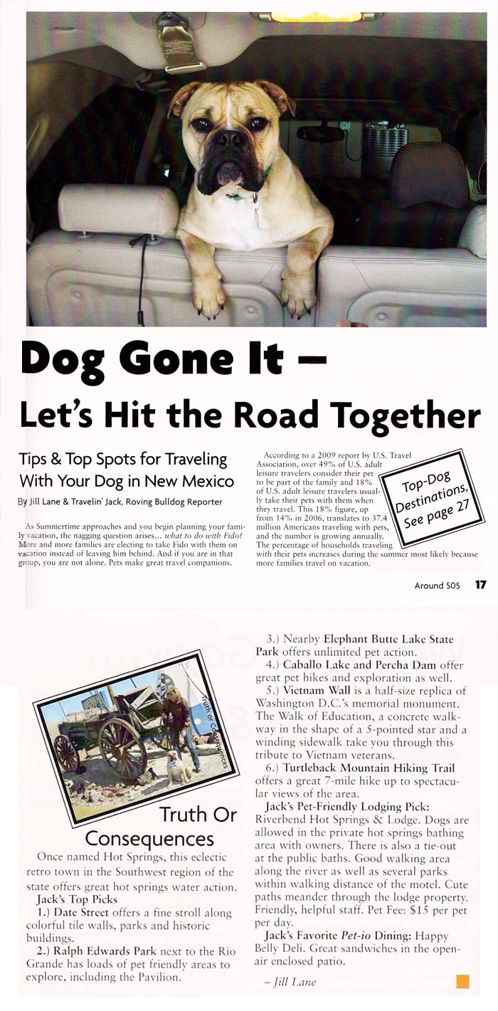 DOG GONE IT - LET'S HIT THE ROAD TOGETHER
