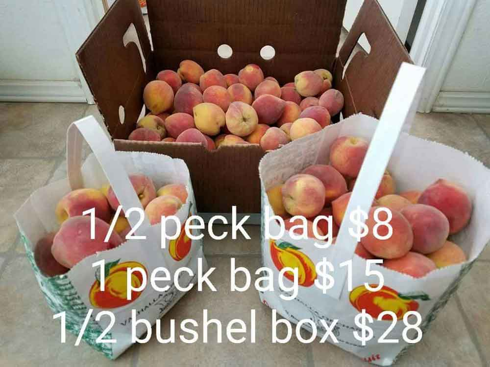 prices to pick your own peaches in 2017