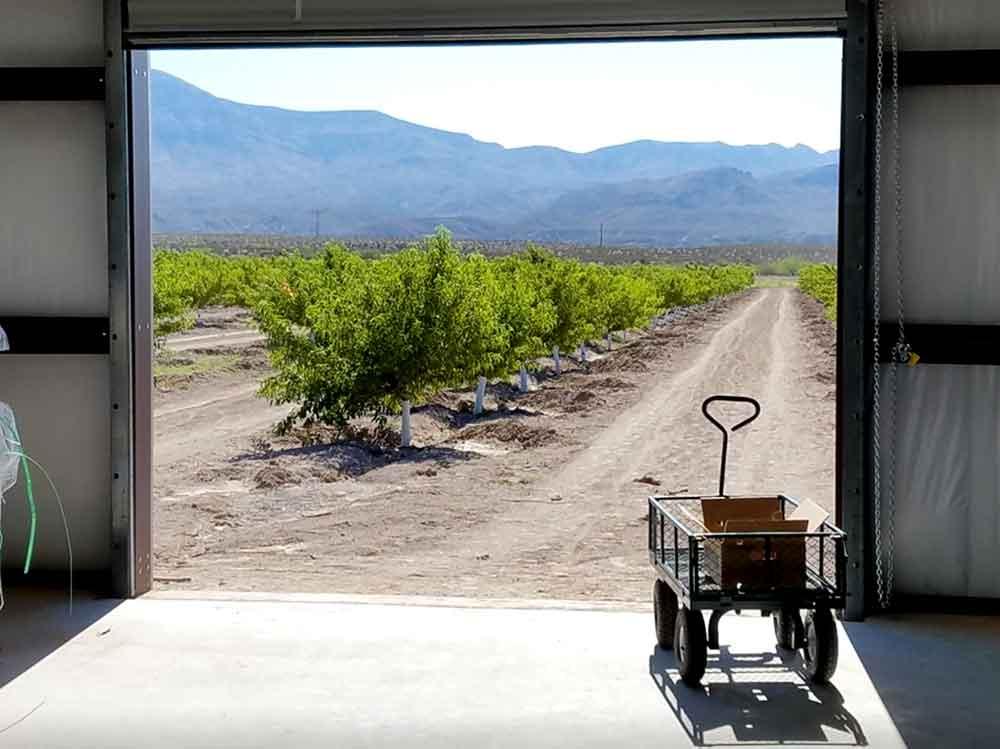 warehouse at Valhalla Orchard, Arrey New Mexico