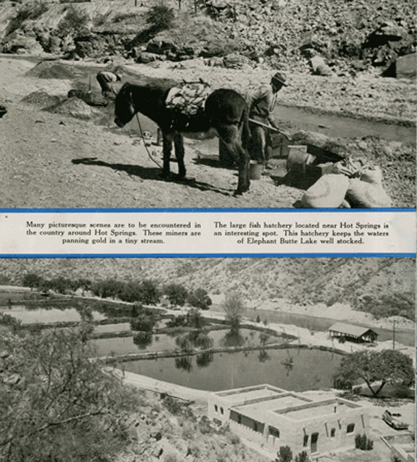 workers with a burro and the Elephant Butte fish hatchery near Hot Springs New Mexico