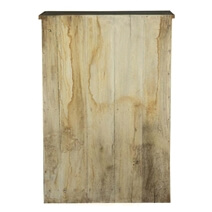 Whitney Reclaimed Wood 2 Door Distressed Storage Cabinet