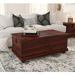 Kokanee Rustic Solid Wood Double Top Storage Trunk Coffee Table