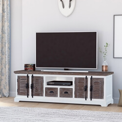 Danville Modern Solid Wood TV Media Console With Door