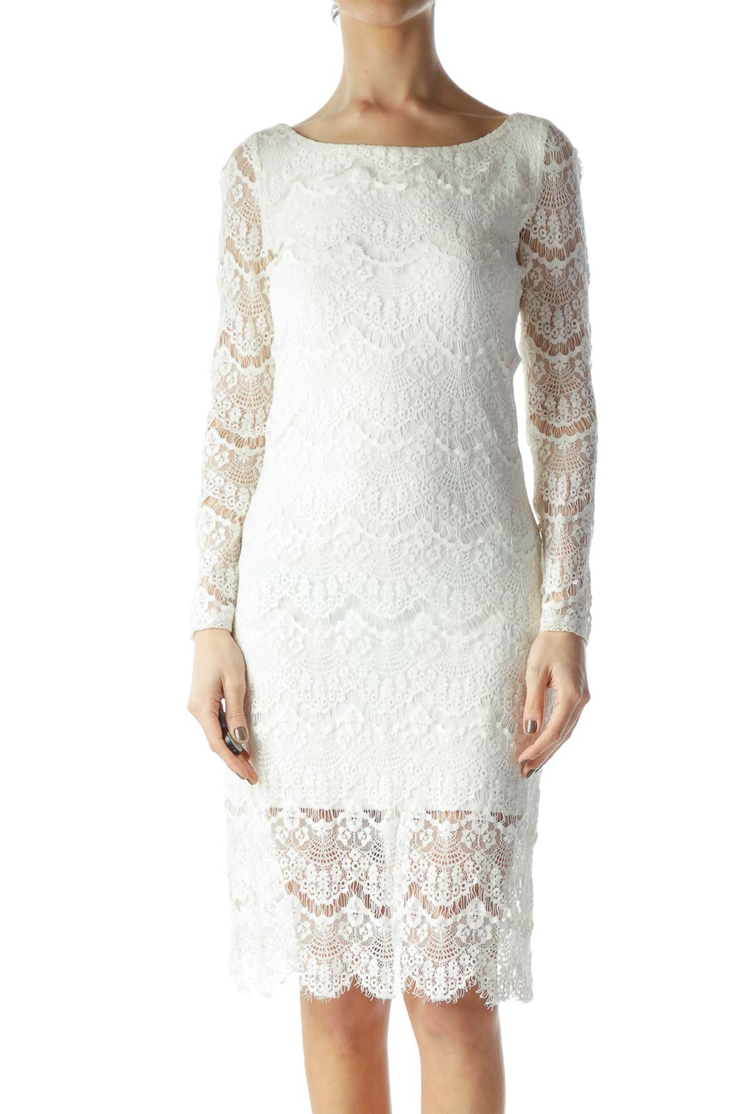 Cream Lace Long Sleeve Knit Dress