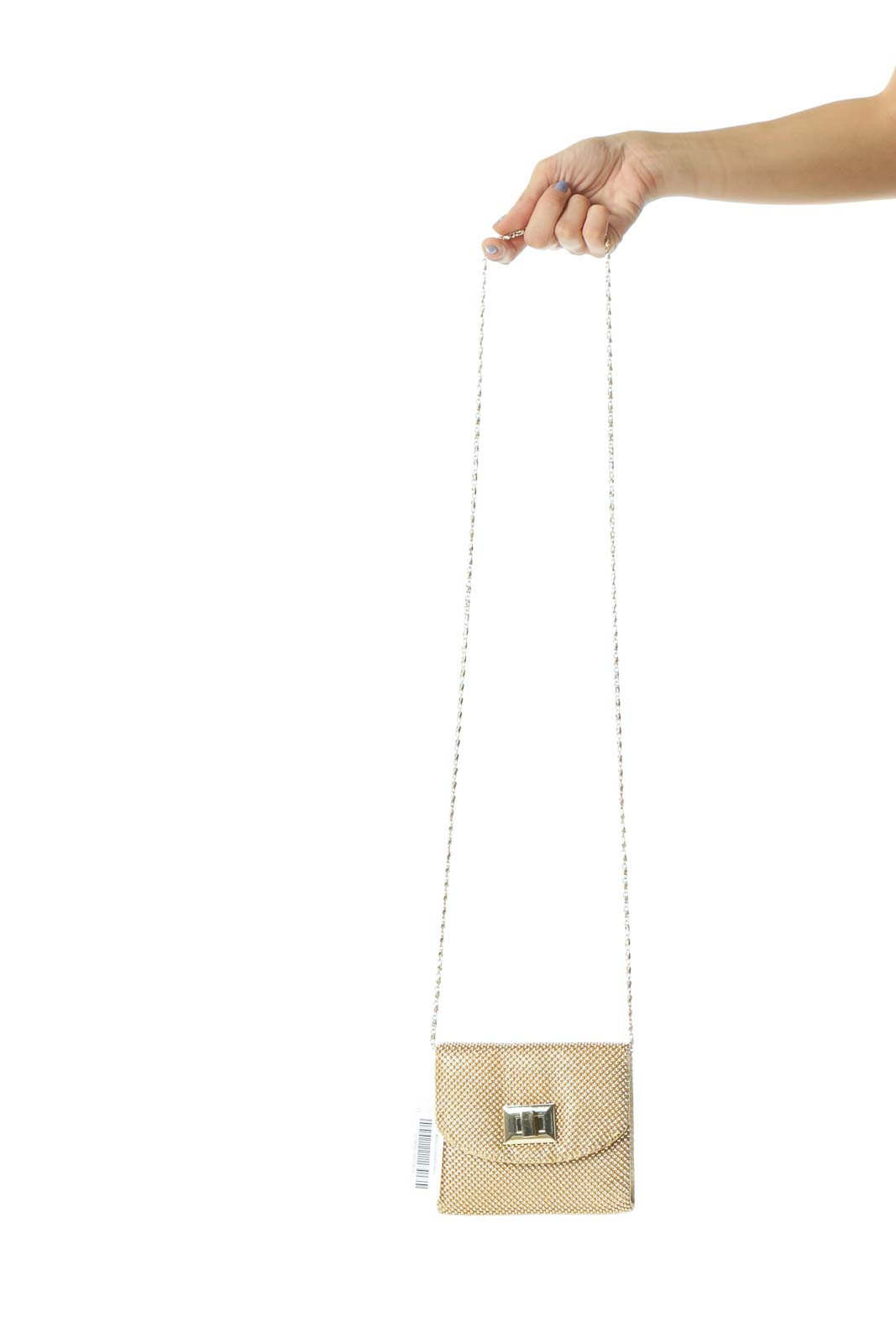 Gold Metallic Beads Chain Metallic-Closure Bag