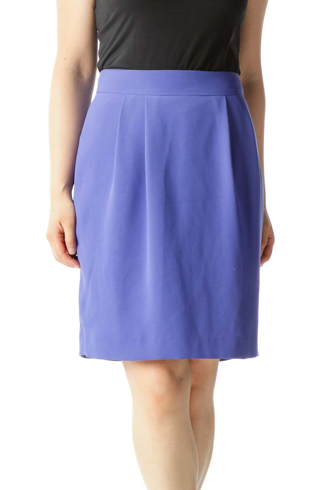Blue Pleated Zippered A-Line Skirt