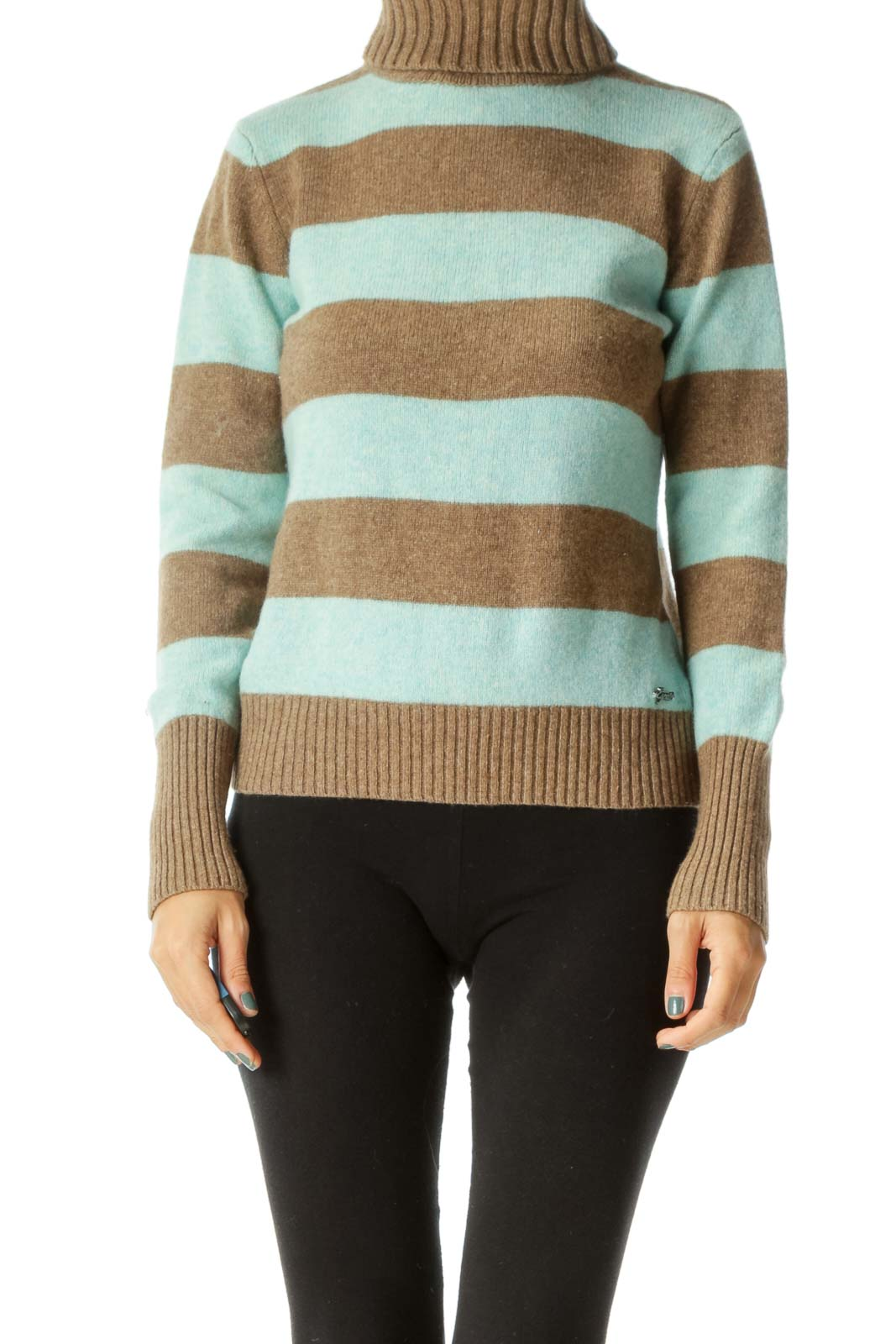 Blue and Brown Striped Turtle Neck