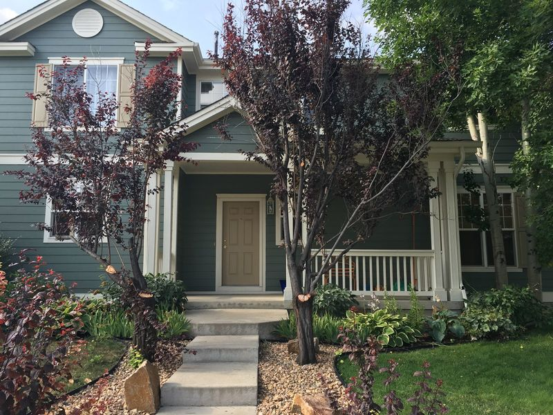 Furnished Sunny, Private BR and BA available 4-1. in Longmont, CO