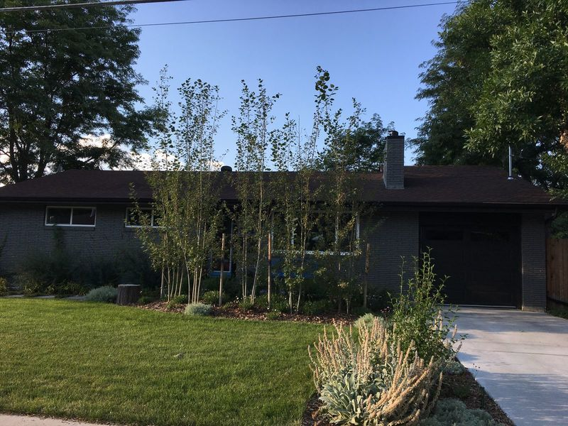 big, 2 bed finished basement living space in Arvada, CO