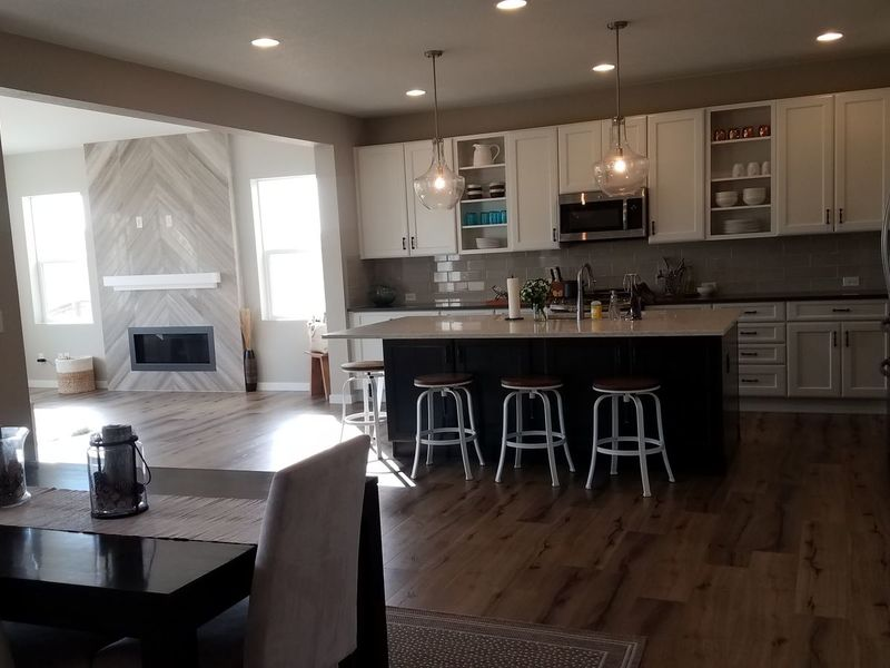 Immaculate NEW home overlooking peaceful nature! in Parker, CO