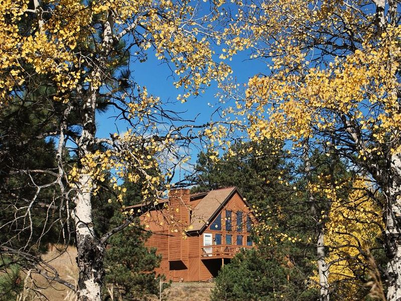 Cozy A-frame, Wooded lot 20 min. from Hwy 285/I-70 in Evergreen, CO