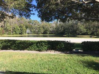 Room for rent in a very Quite Neighborhood in Tarpon Springs , FL