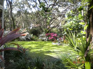 Beautiful home in a quiet neighborhood  in Safety Harbor, FL