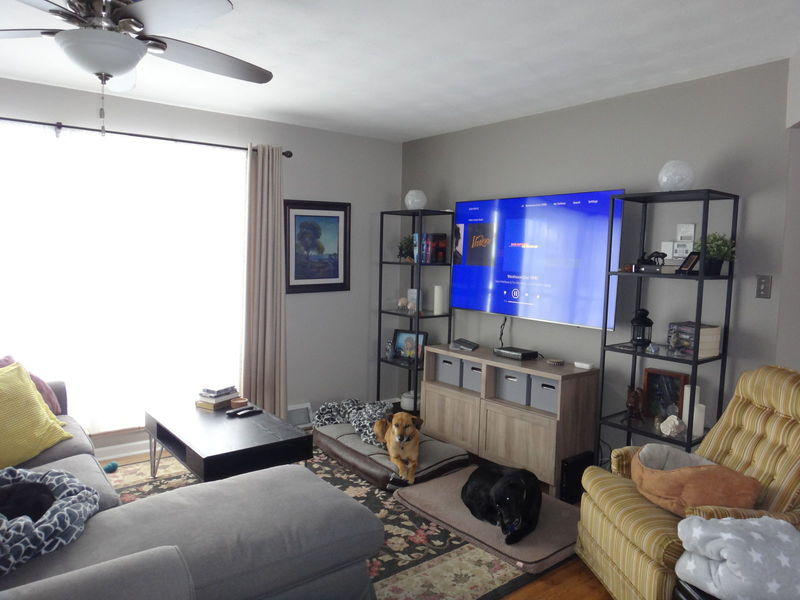 Female Roommate to share my home in Denver, CO