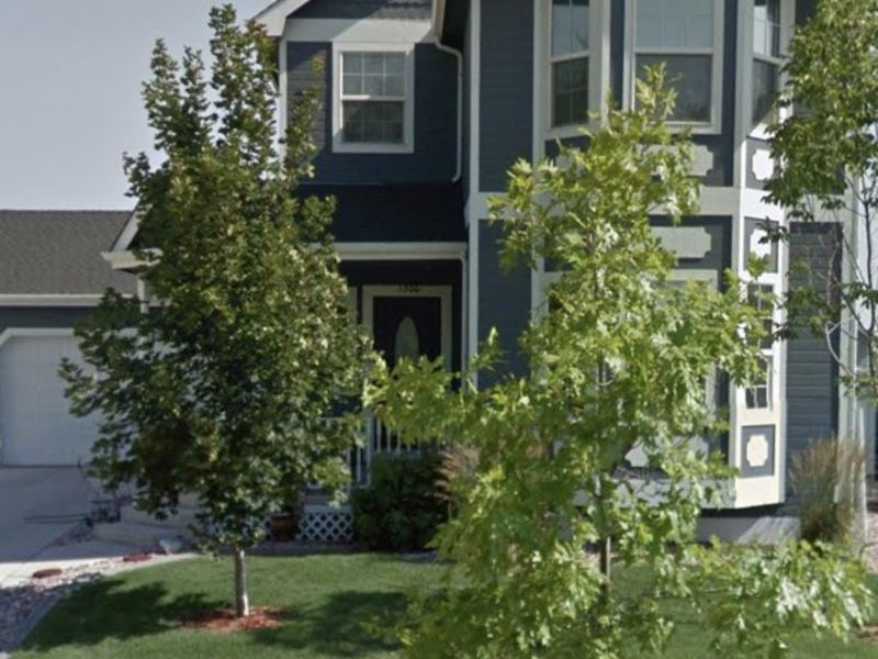 Ultra quiet home near walking trails and parks.  in Windsor, CO