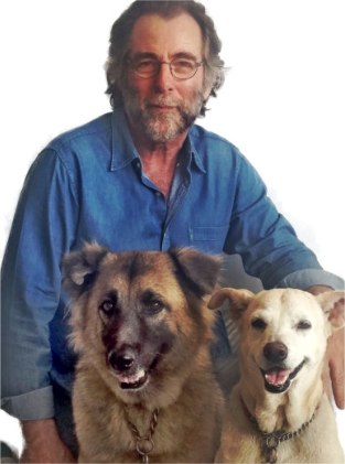rhg w2dogs.png