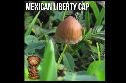mexican-liberty-cap.jpg