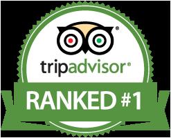 trip_advisor_logo.png