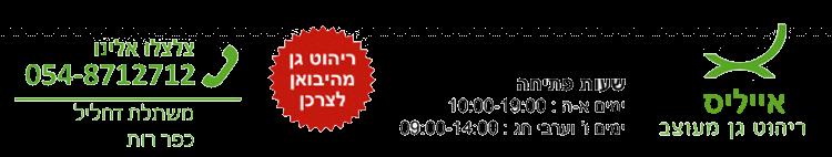 אייליס ריהוט גן במודיעין - לוגו