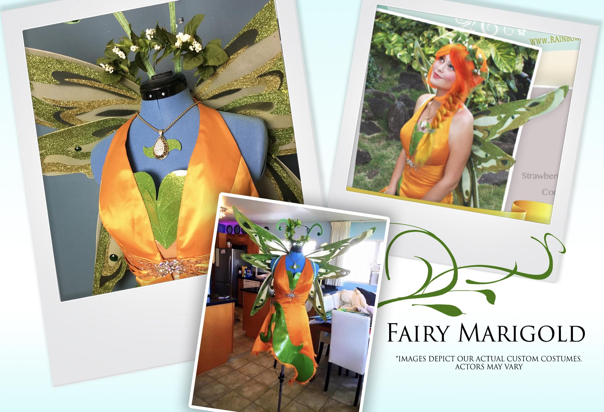 Fairy Marigold