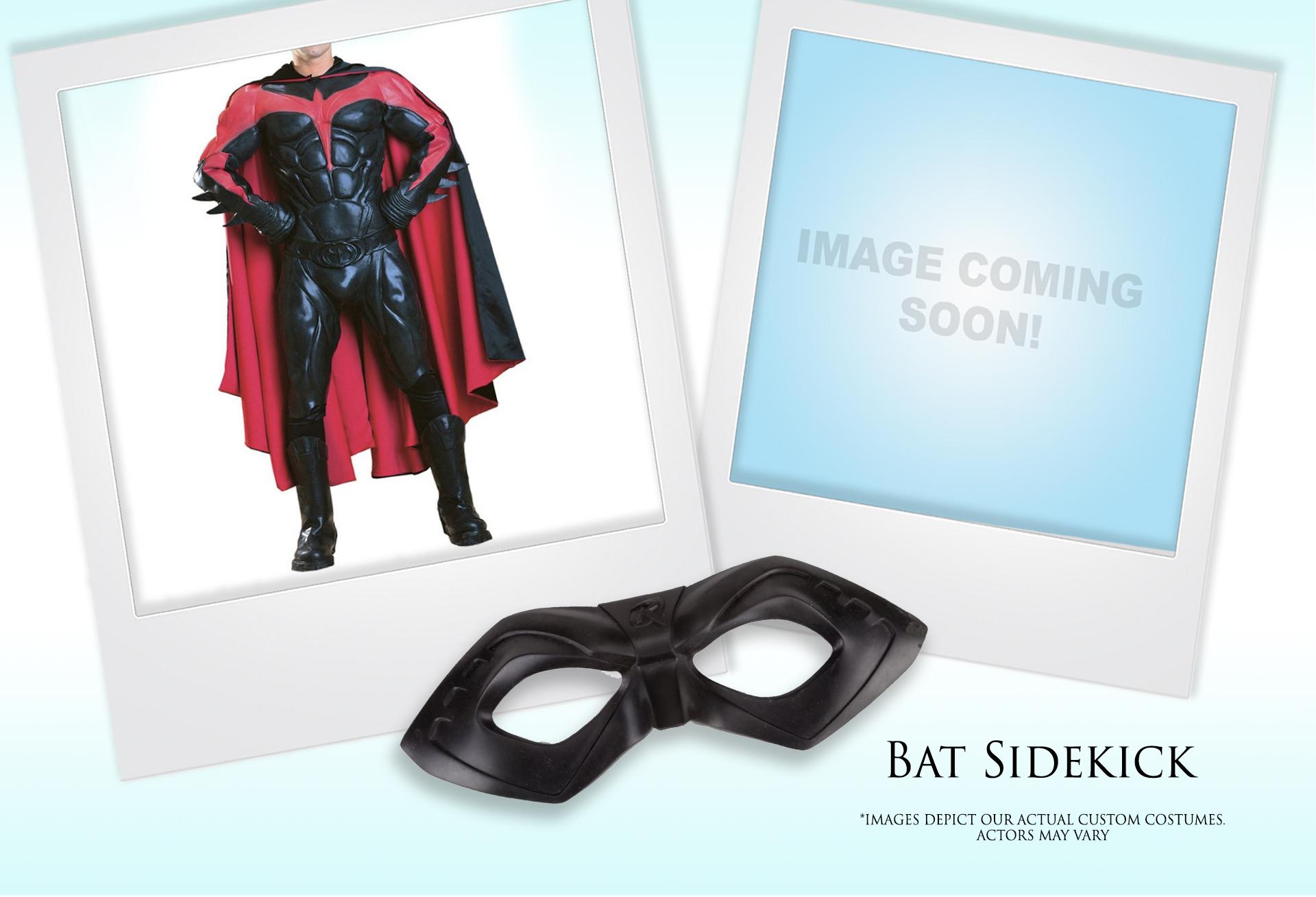 Bat Sidekick