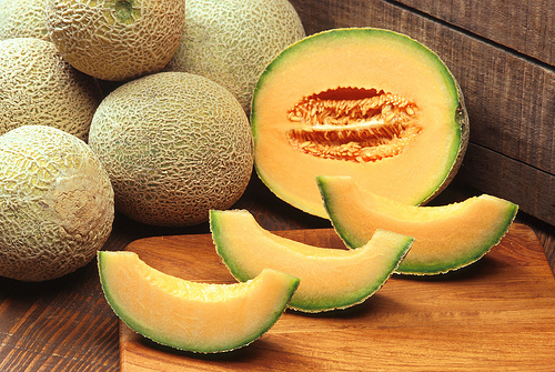 cantaloupe photo