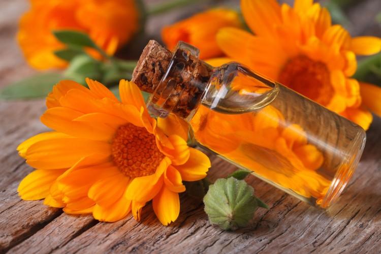 Marigold-Oil