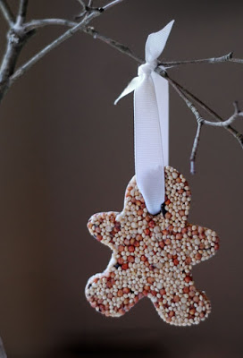 seed ornament 3