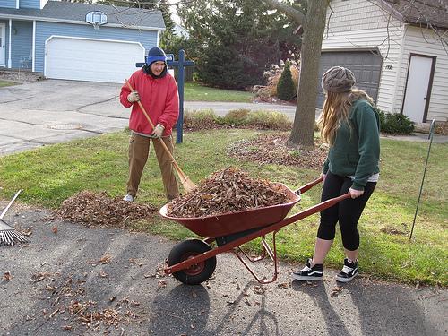 raking leaves photo