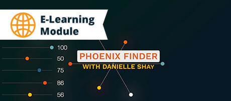 Phoenix Finder Trailer Cardx