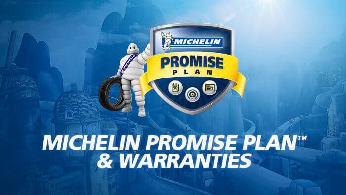 michelin Hero Image