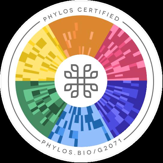 Herijuana Cross Phylos seal