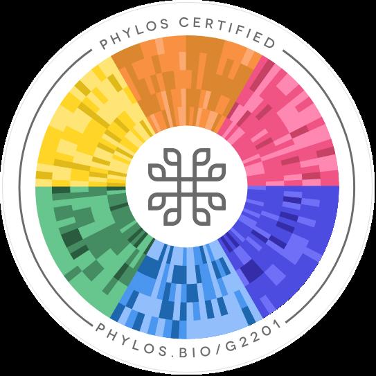 UW Phylos seal